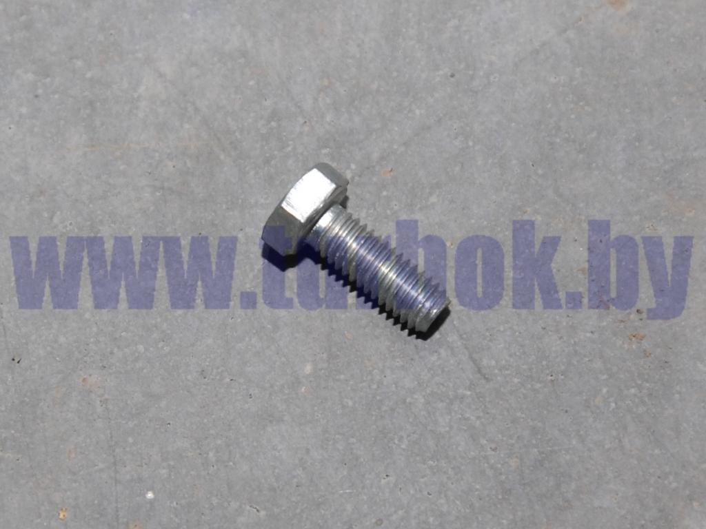 Болт М06*1.0х16 успокоителя цепи короткий КАМАЗ-65115, 6520