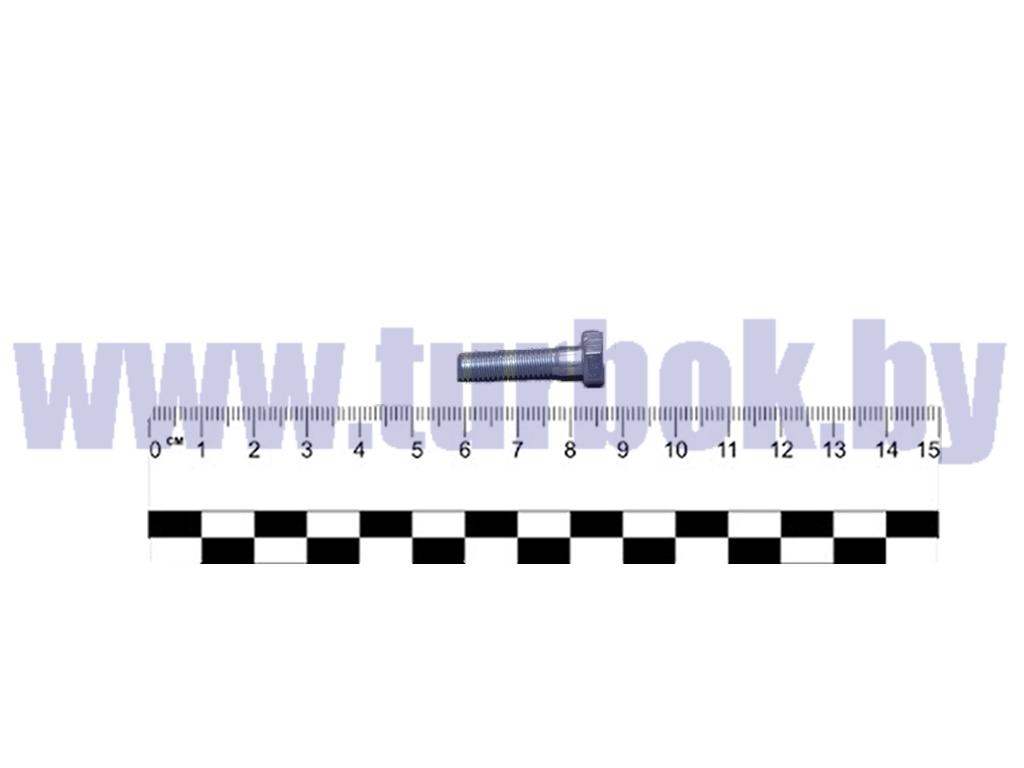 Болт М06-6gх25