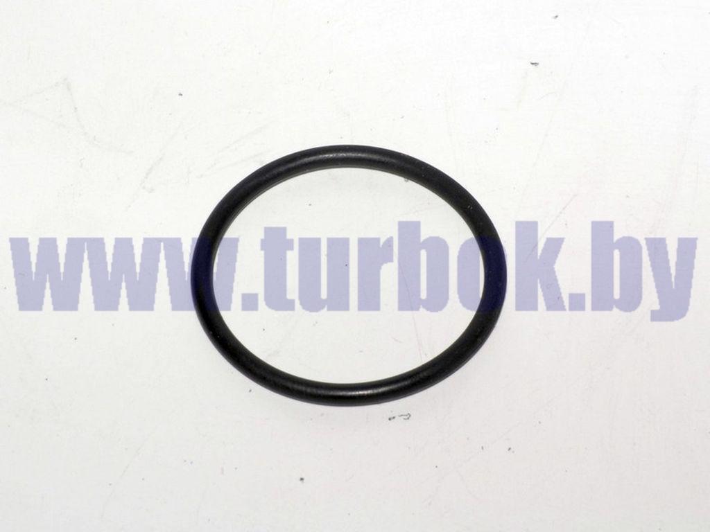 Кольцо системы охлаждения уплотнительное КАМАЗ-65115