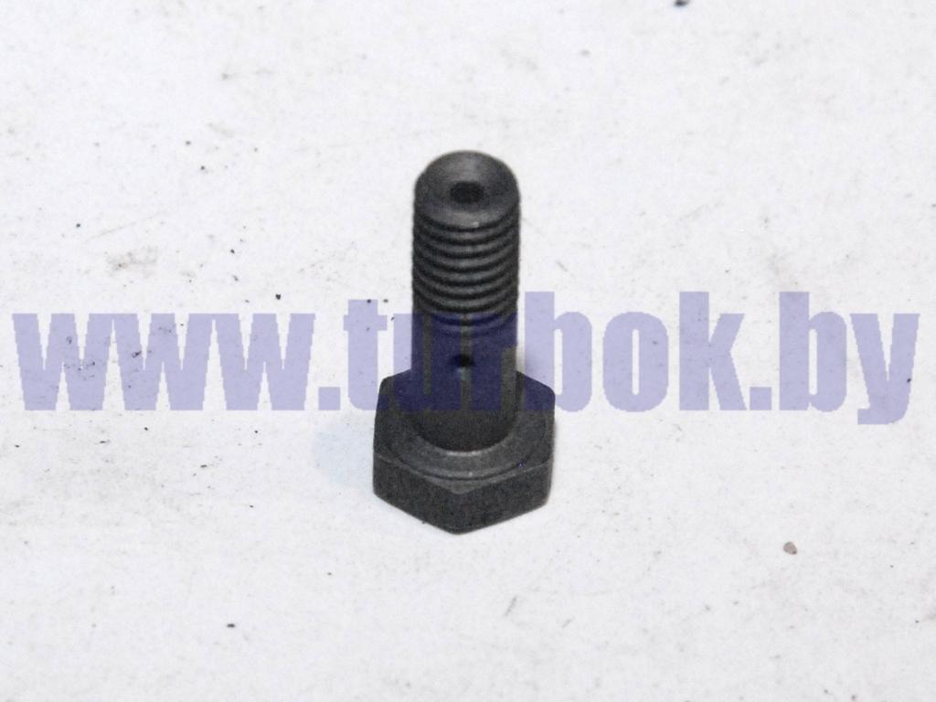 Болт-штуцер М06*1*17 крепления трубки дренажной